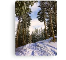Tree Skiing Canvas Print