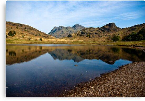 Blea Tarn - Lake District (May) by Trevor Kersley