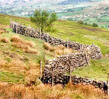 Rosedale Bank by Colin Metcalf