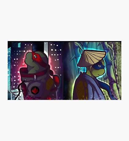 Tmnt Brothers Photographic Print