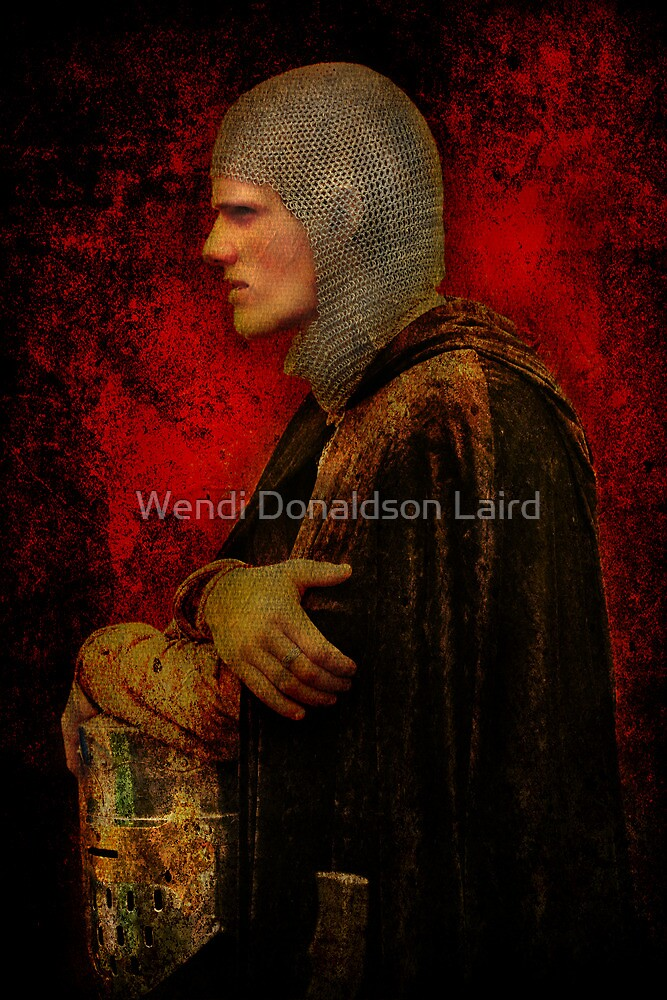 The Young Knight by Wendi Donaldson Laird
