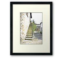 The Steps - Dent Cottage Framed Print