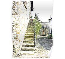 The Steps - Dent Cottage Poster
