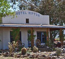 Nipton California by Mike Pesseackey (crimsontideguy)