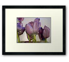 """""""Tulips"""" Framed Print"""
