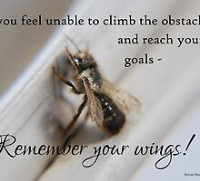 Remember your wings! by Rowan  Lewgalon
