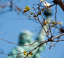 Lady Liberty by Kalpesh Patel