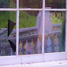Window Pain by dez7