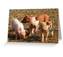 happy Little Piglets Greeting Card