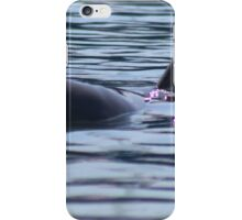 A Dolphin at Monkey Mia  iPhone Case/Skin