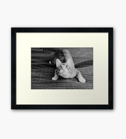 Mischievous Mallory Framed Print