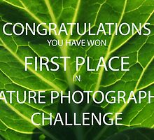 NATURE PHOTOGRAPHY CHALLENGE BANNER by fsmitchellphoto