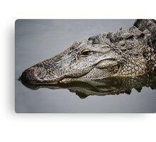 Alligator Reflection Canvas Print