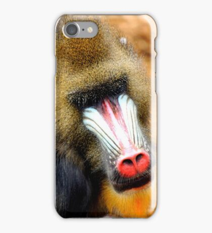 Mandrill 2  iPhone Case/Skin