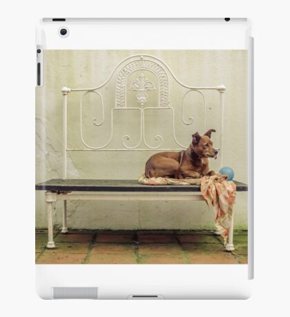Silly Dog iPad Case/Skin