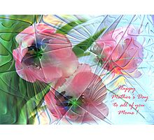 Tulips for Mother's Day   Photographic Print