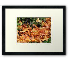 Nature's Blanket Framed Print