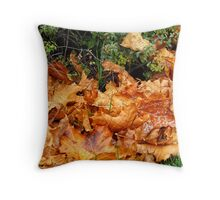 Nature's Blanket Throw Pillow