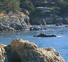 Carmel Coast 4 by Maurine Huang
