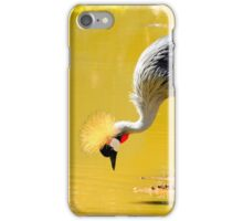 African Crowned Crane at the Edge of the Water iPhone Case/Skin