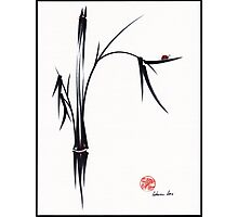 """Gentle Soul"" Chinese japanese ink brush pen painting Photographic Print"
