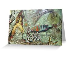 Camoflage Scales Greeting Card