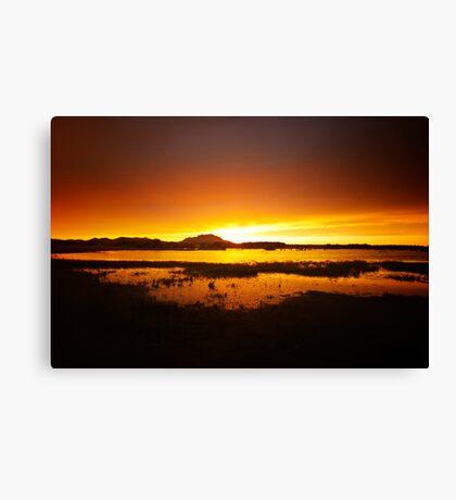 Willow Lake Orange Canvas Print