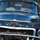Volvo I by Jenny Webber