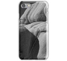 Joshua Tree Monzogranite Abstract iPhone Case/Skin