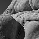 Joshua Tree Monzogranite Abstract by Larry Costales