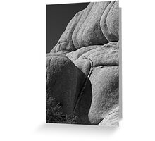 Joshua Tree Monzogranite Abstract Greeting Card