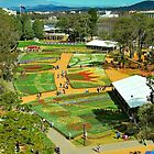 Floriade From Above 2015 by Penny Smith
