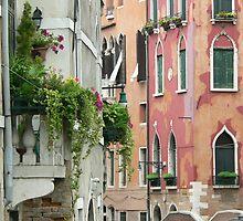 Venetian Architecture by Sandra Baxter