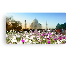 Taj Mahal-4/2011 Canvas Print
