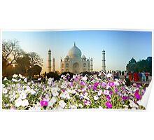 Taj Mahal-4/2011 Poster