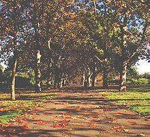Fallen Leaves by MooMooMiguelle