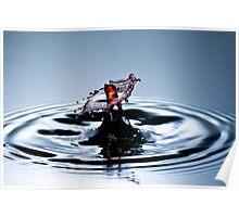 Wet Sombrero Poster