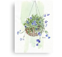 Electric blue hanging basket, Canvas Print
