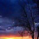 A perfect evening  by Katie WIsniewski