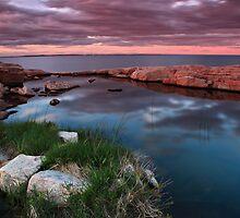The End of the Day View by Wojciech Dabrowski