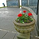 Memorial by Leon Heyns