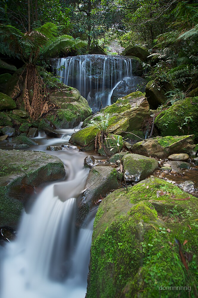 Blue mountains beauty by donnnnnny