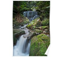 Blue mountains beauty Poster