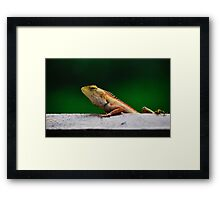 when I grow up I want to be a crocodile Framed Print
