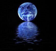 Owl in Blue Moon by antiseptik