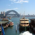 Ferry on Sydney Harbour by Michael Vickery