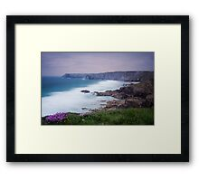 Sea Thrift at Pentreath Framed Print