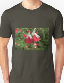 "Salvia ""Hot Lips"" (Salvia microphylla) T-Shirt"