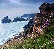 Kynance Cove, Cornwall,UK by David-J