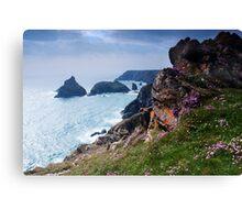 Kynance Cove, Cornwall,UK Canvas Print